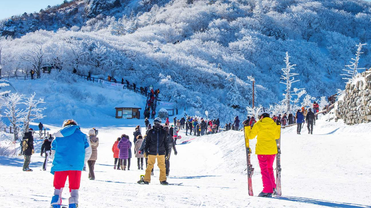 SeoulCityPrivateTransferstoSkiResorts Image credit: best city to celebrate christmas blog.