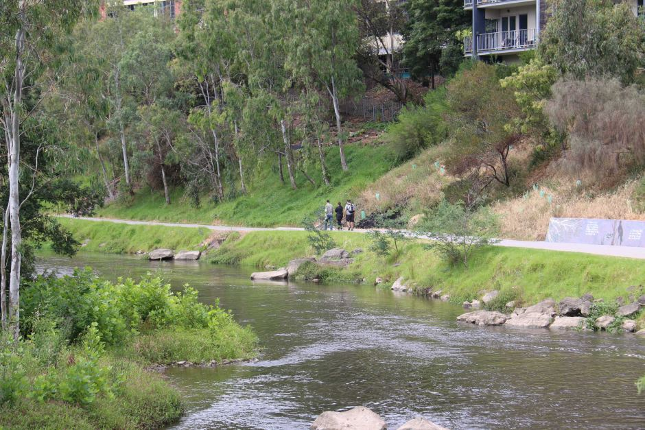 The walking track along the Yarra River in Abbotsford