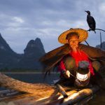 Cormorant fishing Guilin — Meet the legendary fishermen of Li river
