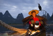 li river fisherman mr huang