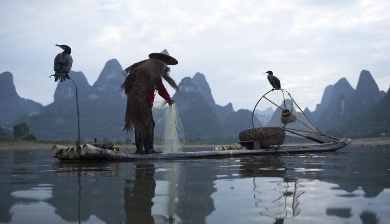 li river fisherman mr huang 3 Photo by: cormorant fishing guilin bog.
