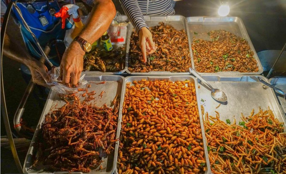 JJ Green-night market-bangkok8