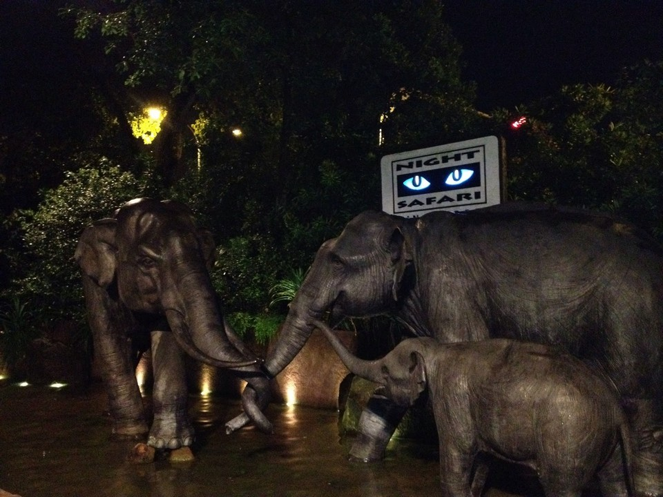 night-safari-singapore 3