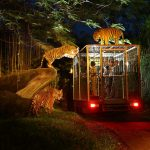 Singapore night safari tips — How to have a wonderful trip in Singapore Night Safari