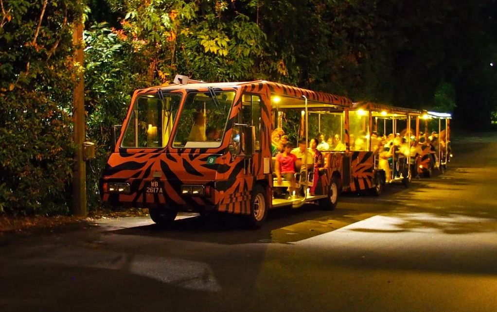 Image by: singapore night safari tips blog.