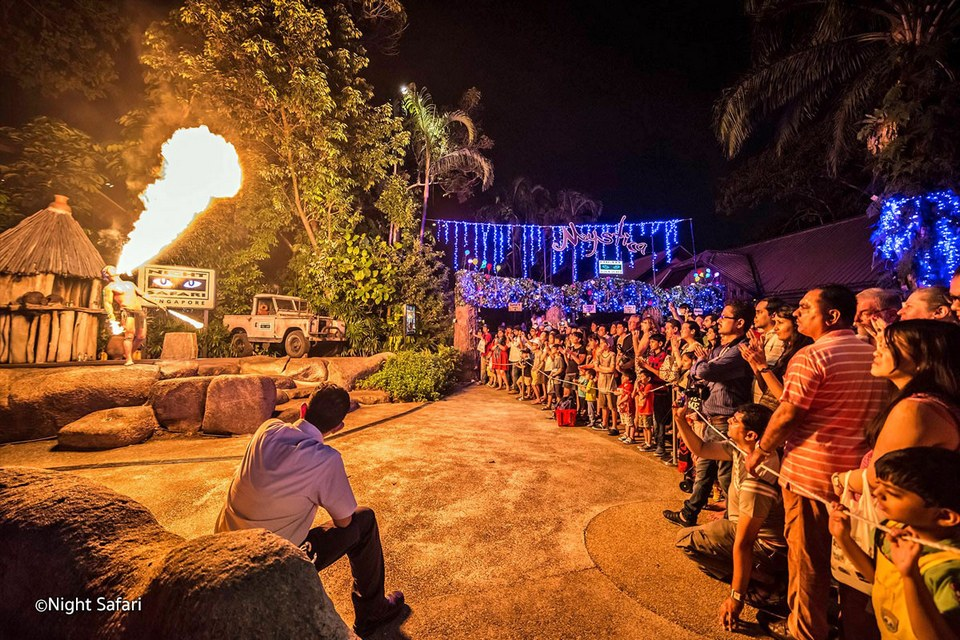 night-safari-singapore-show