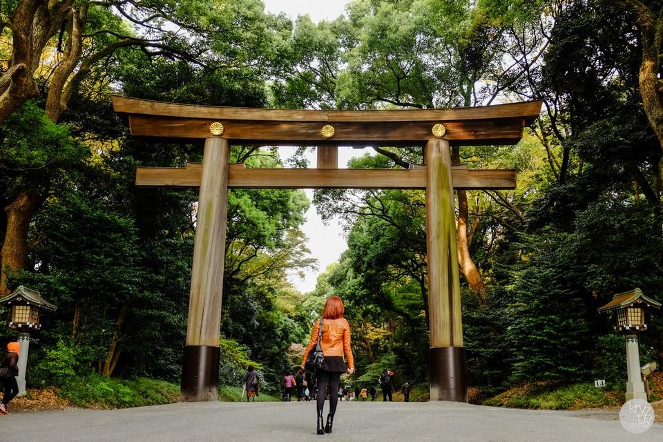 Meiji Shrine-tokyo1