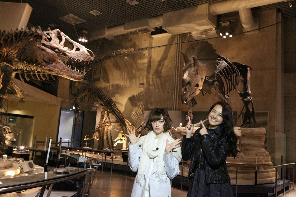 Explore the Wonders of Japan's National Museum of Nature and Science in Ueno