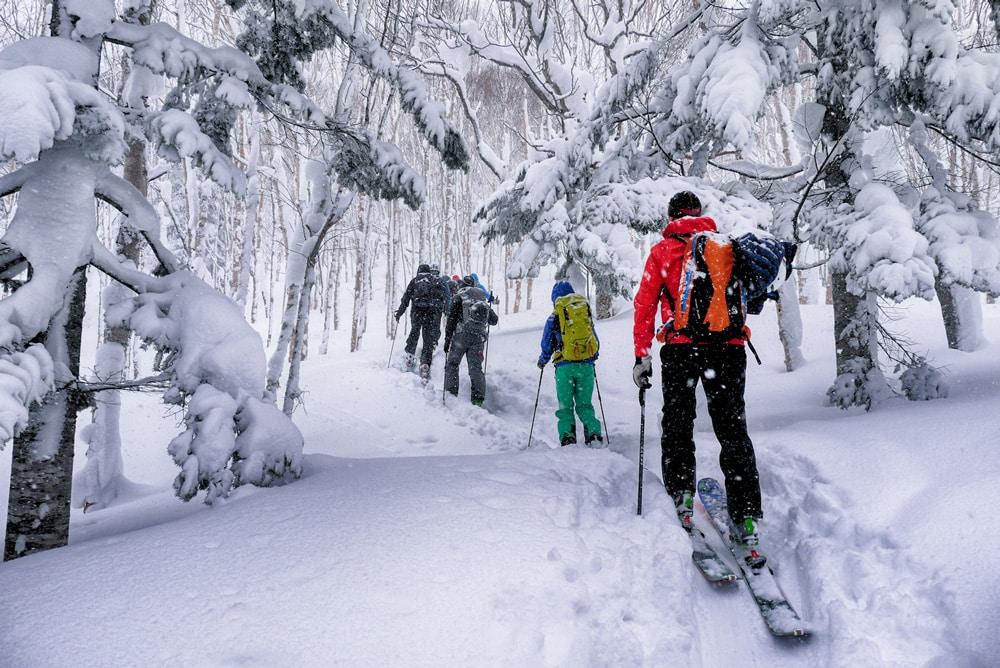 hokkaido-ski-touring2 Credit: best ski resorts in hokkaido blog.