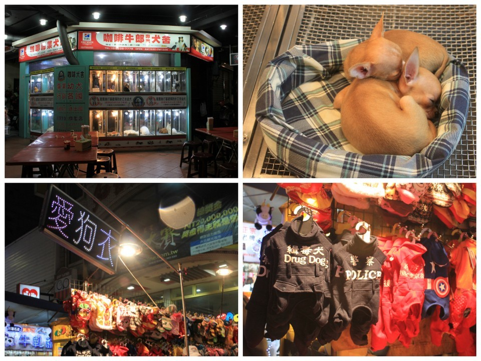 Pet shop at Liouhe Tourist Night Market, Kaohsiung