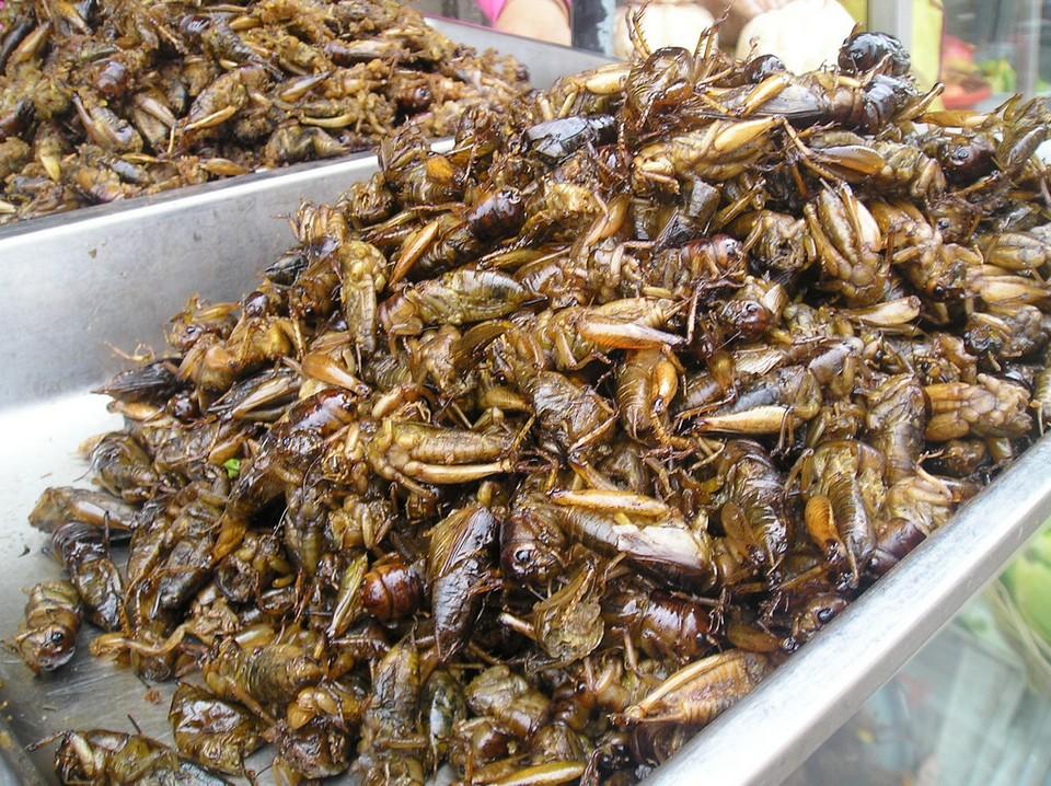 Fried crickets, Russian Market
