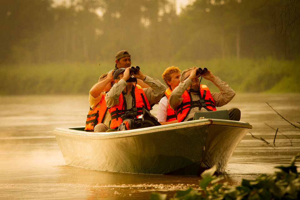 kinabatangan river-7 unforgettable experiences on the Borneo Island1
