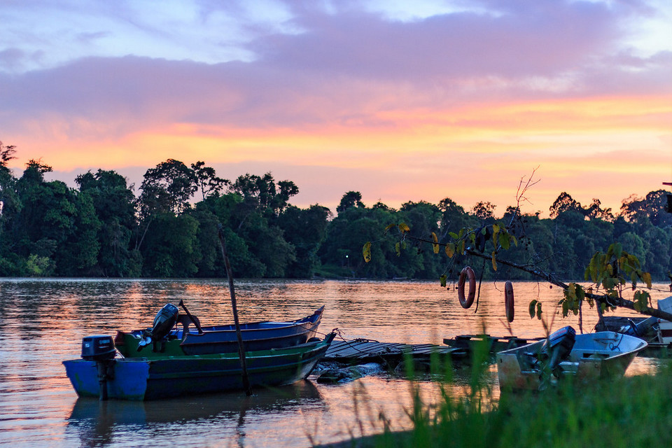 kinabatangan river-7 unforgettable experiences on the Borneo Island2