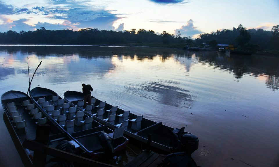 kinabatangan river-7 unforgettable experiences on the Borneo Island3