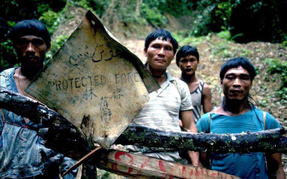 penan people-borneo-malaysia11