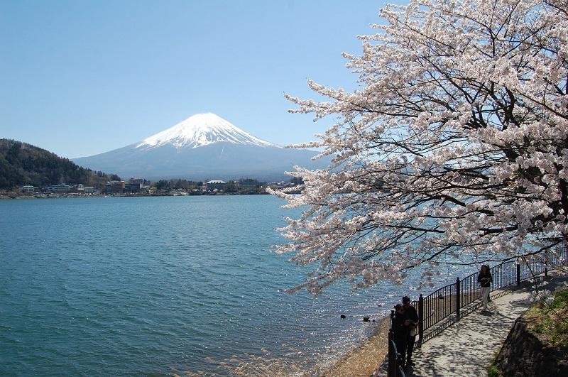 Kawaguchi lake-fuji-japan16