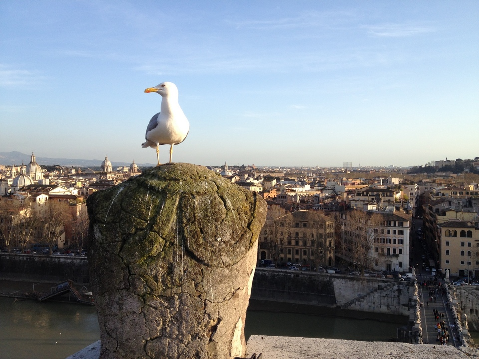 Castel Sant'Angelo-italy7
