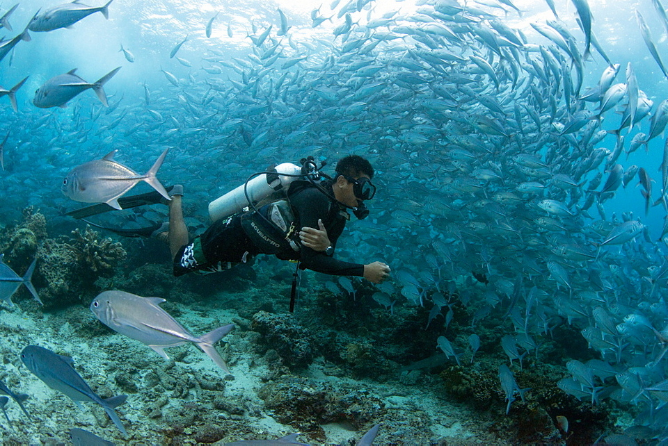 Sipadan Island has long been known as a heaven for scuba diving lovers.