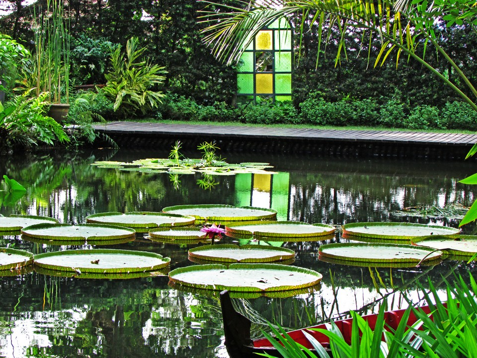 Botanical garden, spice garden of Penang Image by: penang travel blog.