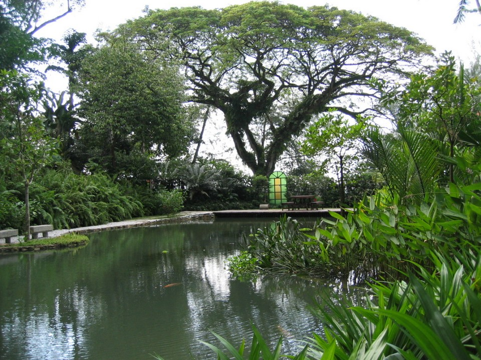 Botanical garden, spice garden of Penang