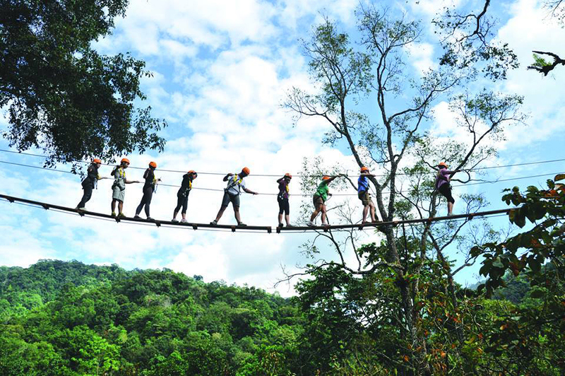Flight of the Gibbon -chiang mai-thailand