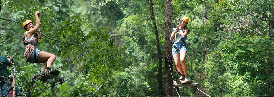 best zipline chiang mai dragon flight zipline chiang mai