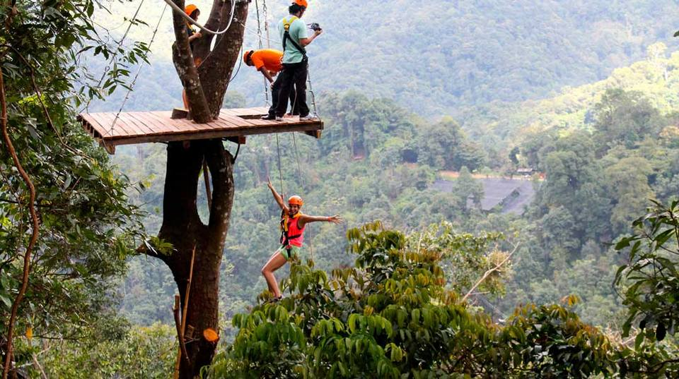 Chiang Mai canopy treetop Thailand canopy zip line ...
