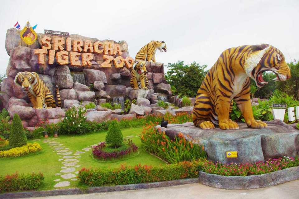 Sriracha Tiger Zoo - lord of forest-thailand