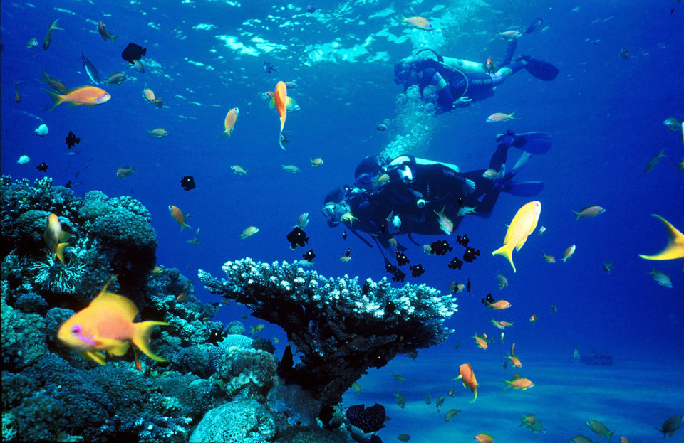 palawan-most beautiful islands in Southeast Asia7