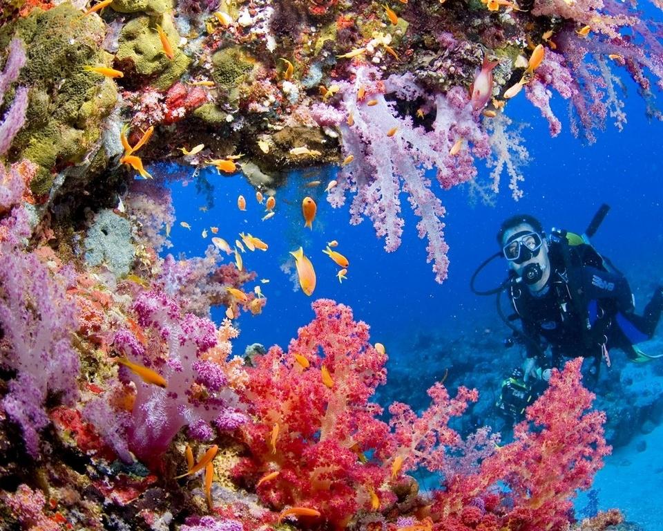 palawan-most beautiful islands in Southeast Asia9 best islands in southeast asia best islands in se asia most beautiful islands in southeast asia