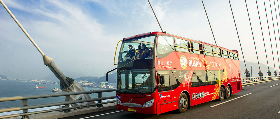 busan city bus tours (1)