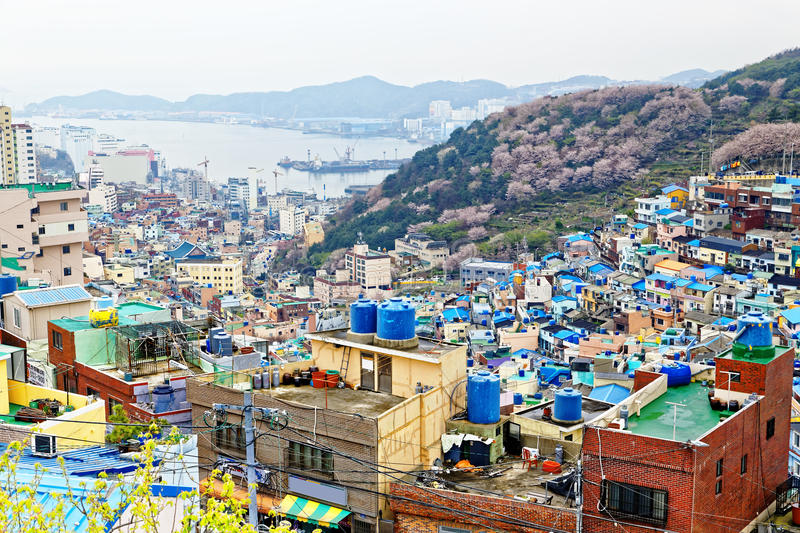 Gamcheon Culture Village Busans Hidden Gem busan blog busan travel blog