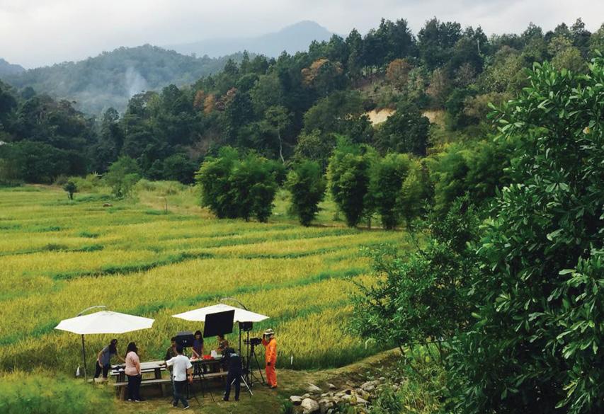 Anna Farm & Eatery chiangmai (1)