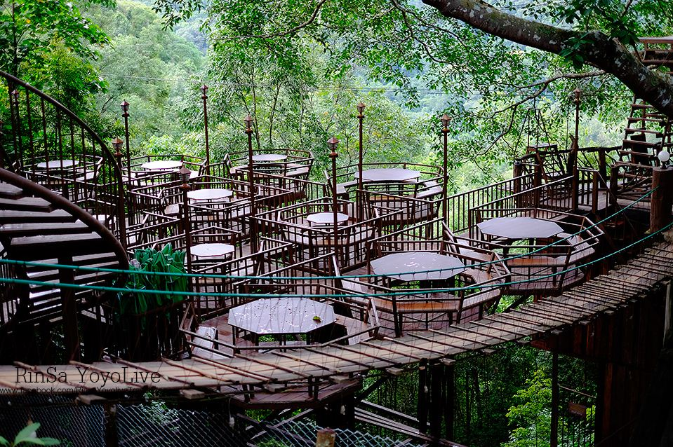 Giant Tree House Coffee Shop In Chiang Mai Homestay 5