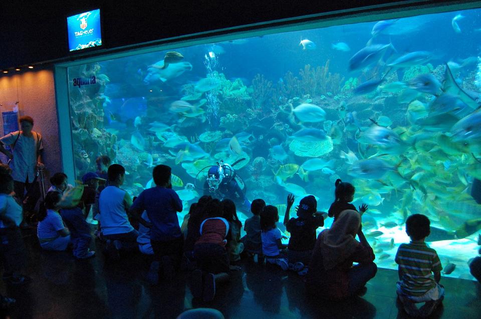 Aquaria Aquarium KLCC