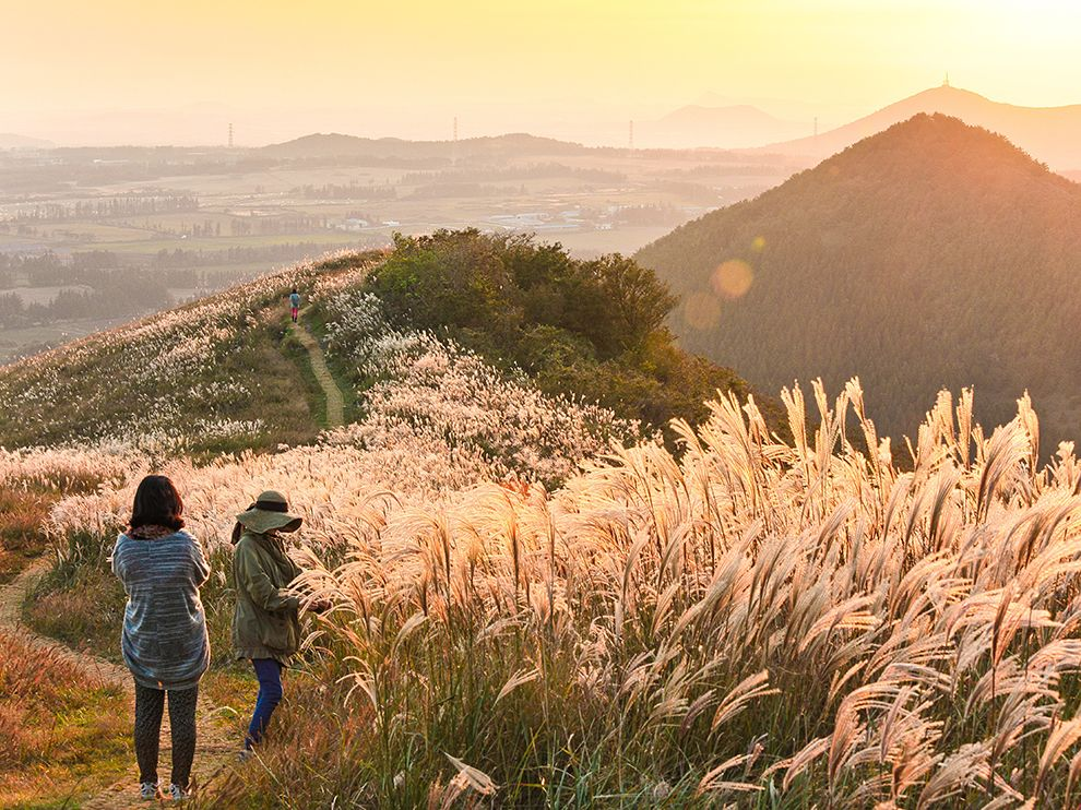Warm autumn light ensconces Saebyeol Oreum, an ancient volcanic cone in southwestern Jeju Island,
