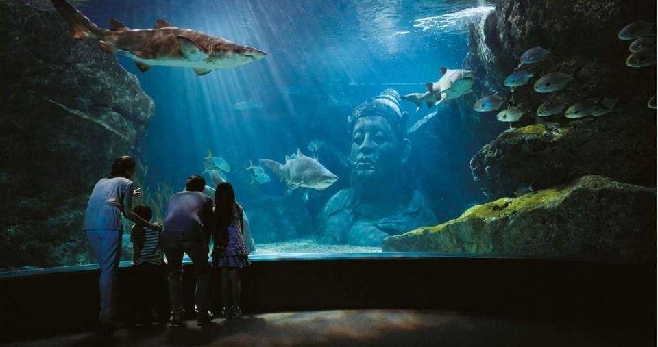 SEA Life Aquariums Bangkok-bangkok-thailand2