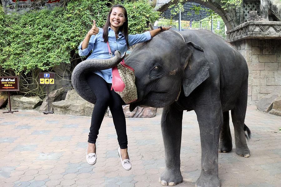 Safari World Bangkok-bangkok-thailand2