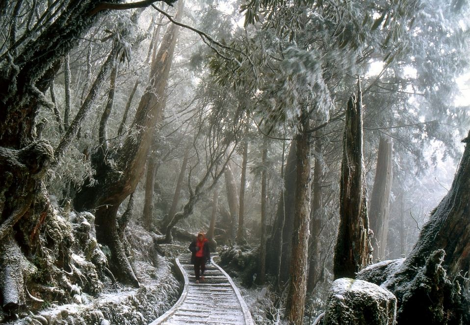 Snow-covered Taipingshan National Forest Recreation Area