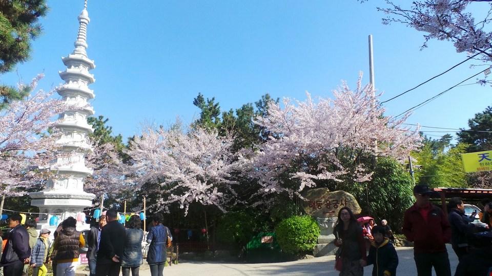 korea haedong yonggungsa temple