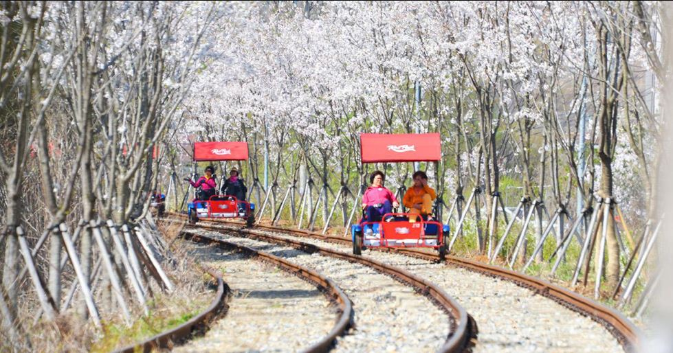 Gangchon Rail Bike Seoul