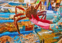 king crab noryangjin-fish-market-guided-tour_01