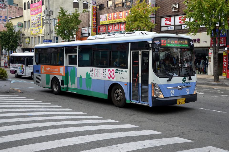 busan bus