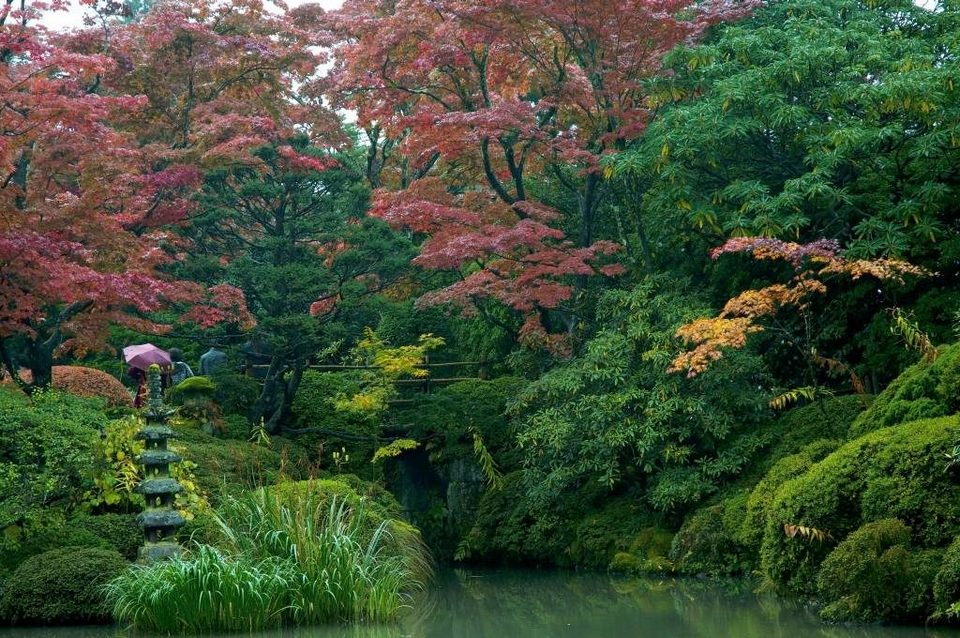 Nikko-Garden in the Rain