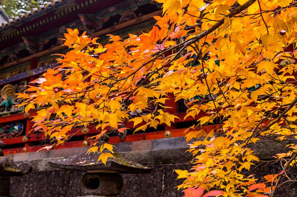 Secluded-spots-nikko-toshogu-shrine4