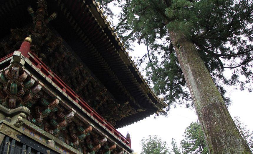 toshogu nikko shrines