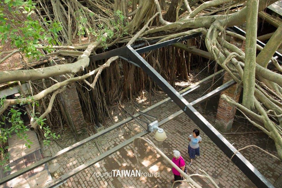 Anping_Tree_House__4