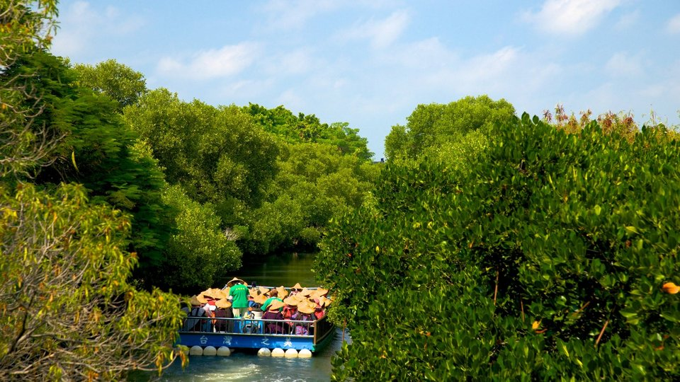 Taijiang National Park showing a river or creek and mangroves