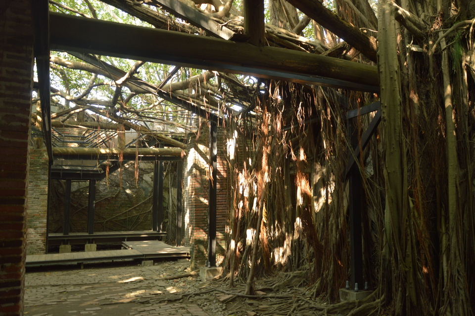 taiwan-tainan-roof-anping-tree-house8