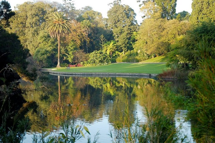 Royal Botanic Gardens Melbourne Picture: 7 days in melbourne blog.